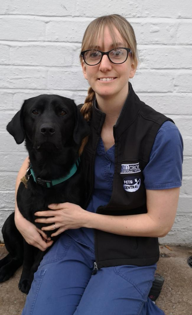 Nichola Rae, Registered Veterinary Nurse at Millcroft Vets, advises regular brushing of your pet's teeth for good oral health