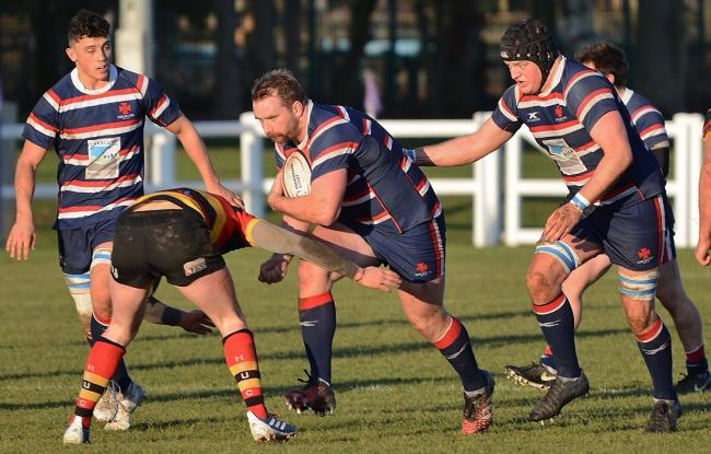 Hard yards: Carlisle Rugby Club player-coach Matt Shields attacks in the Cumbrian team's win over Harrogate on Saturday (Photo: Bill Glendinning)