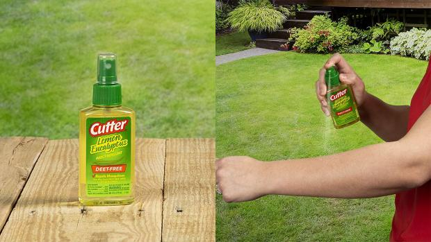 News and Star: Ditch the horrible smelling insect repellents for one that's fragrant and offers up to six hours of protection. Credit: Cutter