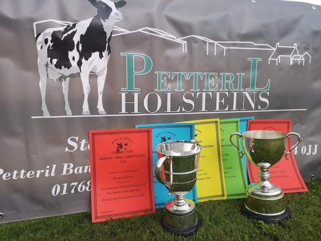 Petteril Holsteins, Overall Winners