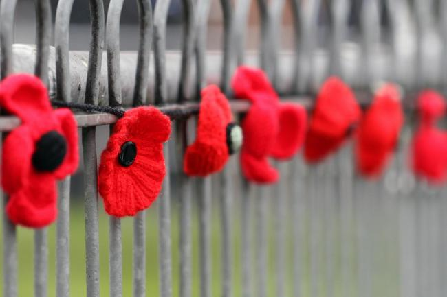 Remembrance: Poppies on a cenotaph memorial.