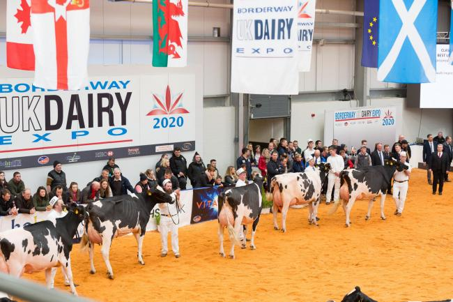 Cancelled:Dairy Expo 2021...Credit Richard Hodgson