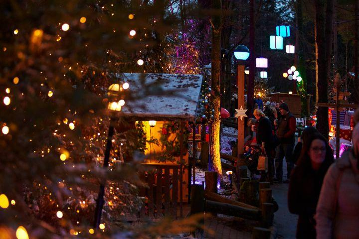 Christmas At Center Parcs How Much It Costs How To Book And