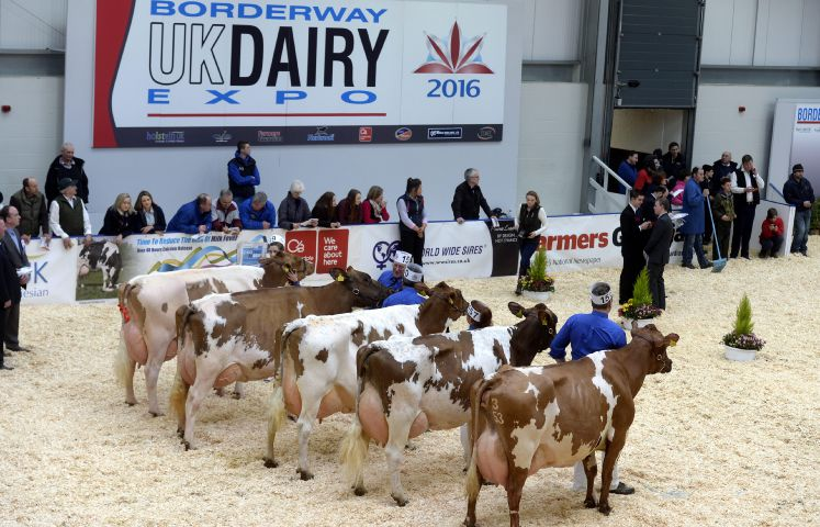 Borderway UK Dairy Expo 2016