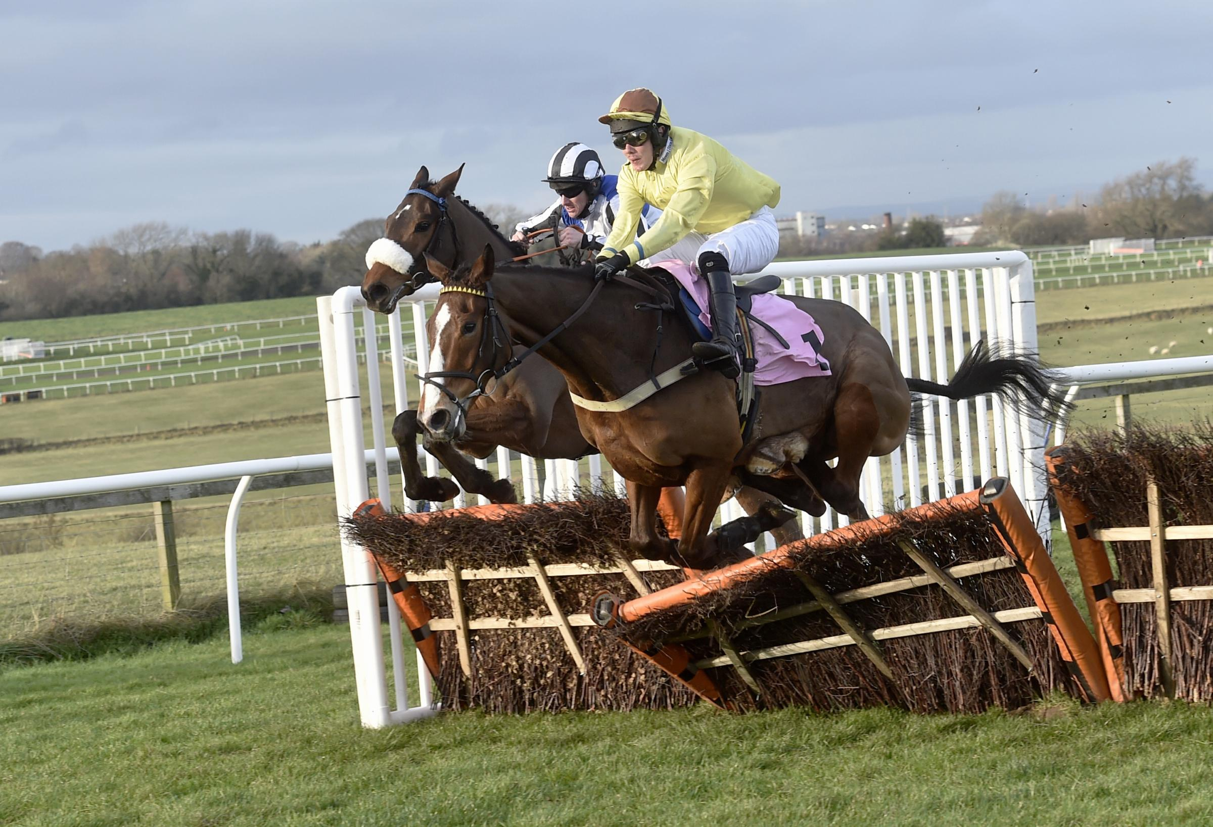 Flying: Captain Zebo, ridden by jockey John Dixon in the yellow top, is pictured coming over the final flight to win The Smarkets National Hunt Novices' Hurdle Race (Photo: Louise Porter)