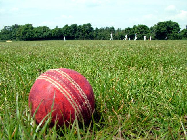 Cricket ball in the long grass.